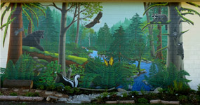 School Murals Vancouver BC Landscape Wildlife Kid's School Mural by Kim Hunter