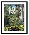 Canadian Landscape Painting Framed Art Prints, Fine Art Posters, Landscape Painting Prints, Landscape Painting Framed Prints Canadian Old Growth Forest Art Print greeting cards, magnets, calenders,journals , gifts & More
