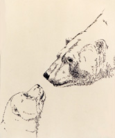 Polar Bears Sketch drawing Wildlife Paintings Churchill MB Original Pen & ink Wildlife Drawingby Canadian Metis artist / designer Kim Hunter