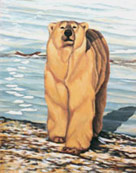 Wildlife Paintings Polar Bear Painting Churchill MB bear painting by Canadian Artist Kim Hunter / Indigo