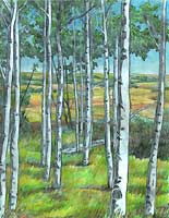 Landscape Sketched Aspen / Birch Tree Pencil Sketch in the Alberta Foothills Pencil Drawing by Canadian Artist Kim Hunter / INDIGO. Custom Art & Illustration Available!