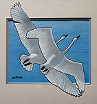 wildlife painting Mated Trumpeter Swans in Flight Original Painting Click on Image for Detail